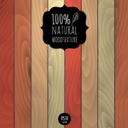 Link toVector natural wood background graphics 01