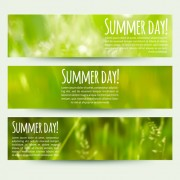 Link toBlurred green summer banner vector 02
