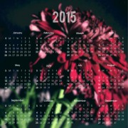 Link to2015 calendar with blurred flower background vector