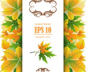 Beautiful autumn leaves with paper background 02