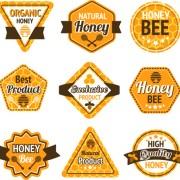 Link toBee honey labels retro design vector