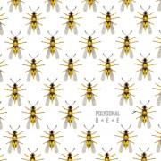 Link toCreative bee seamless pattern vector