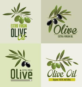 Creative olive oil logos vectors