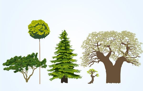 Different tree vectors material