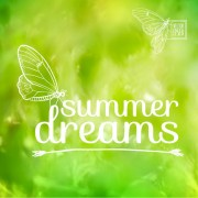 Link toDreams summer with butterfly background