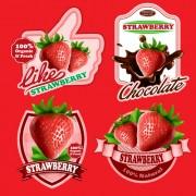 Link toFresh fruits labels shiny vector 02