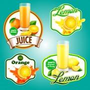 Link toFresh fruits labels shiny vector 03