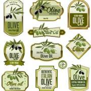 Link toGreen olive oil labels set vector 01