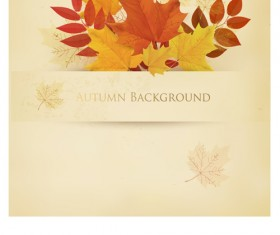 Leaf autumn creative background vector
