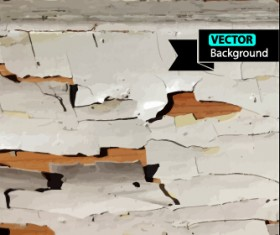 Old wall with crack background vector
