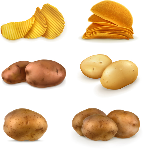Potatoes and potato chips vector graphics - Vector Food free download