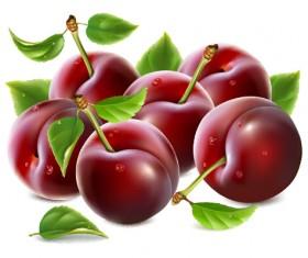 Ripe fresh cherry creative vector