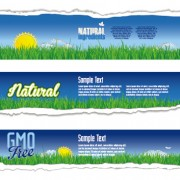 Link toTorn paper eco style banners vector 04