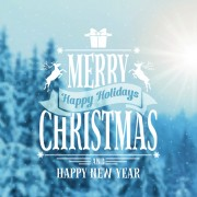 Link toWinter forest christmas blurred background 02
