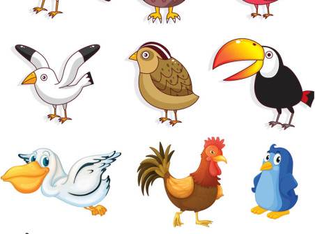 Cartoon Birds Vector Free Download