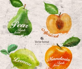 Drawn watercolor fruits vector design set 03