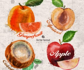 Drawn watercolor fruits vector design set 05