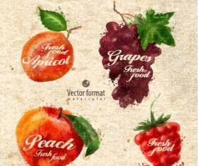 Drawn watercolor fruits vector design set 07