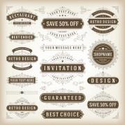 Link toElegant sales discounts labels vector