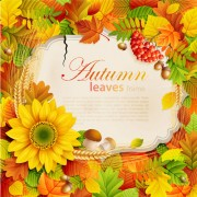 Link toHalation autumn leaves art background vector 02