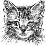 Link toHand drawing black kittens vector 01