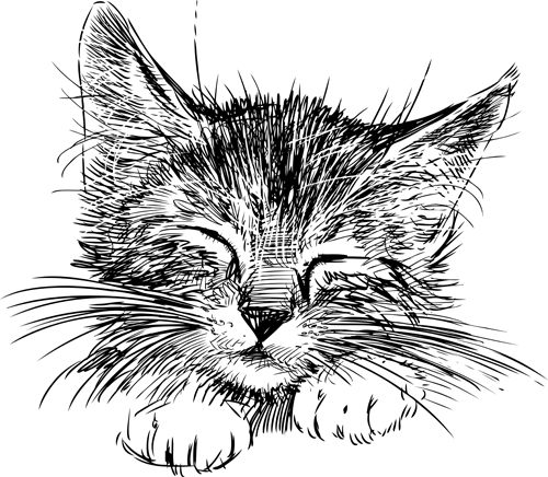 Hand Drawing Black Kittens Vector 03 Animal Free Download