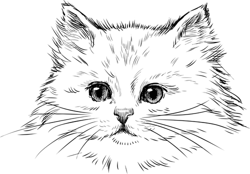 Hand Drawn Cats Head Vector Set 02 Free Download