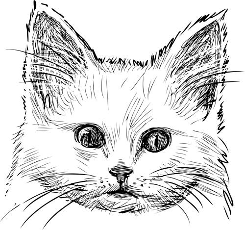 Hand drawn cats head vector set 04