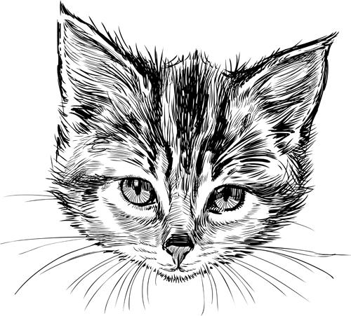 Hand drawn cats head vector set 05