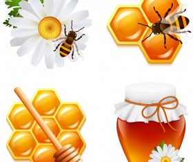 Honey and bee with flower icons vector