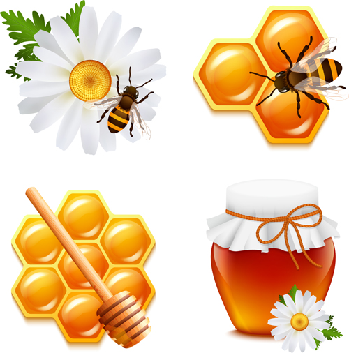 Honey And Bee With Flower Icons Vector Animal Icons