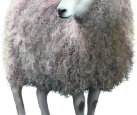 Realistic sheep vector material