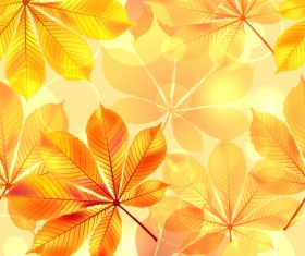 Sunlight with autumn leaves seamless pattern vector