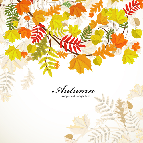 Colored autumn leaves backgrounds vector