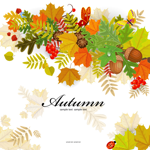 Colored autumn leaves with fructification backgrounds vector 03