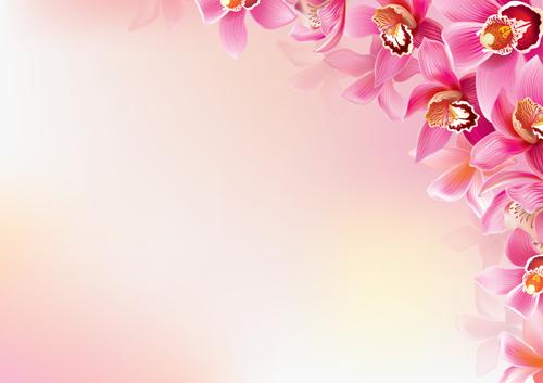 Elegant orchids vector background art 02