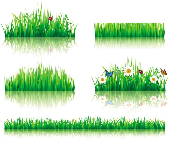 Flower With Grass Border Vector Material 03 Vector