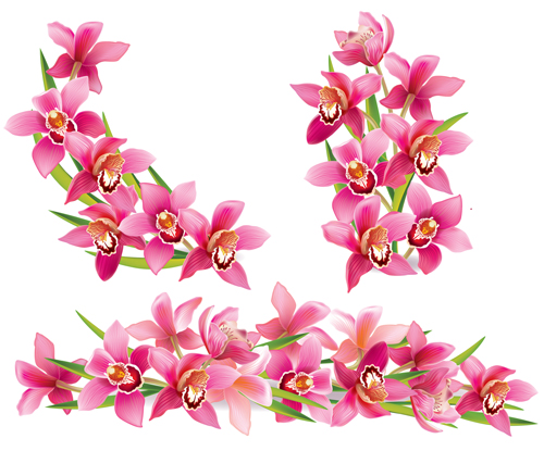 Pink orchids design vector 02