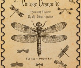 Vintage Dragonfly Brushes
