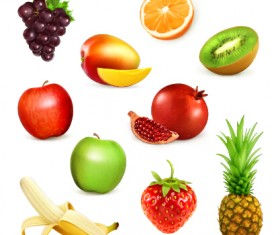 Vector realistic fruits icons material