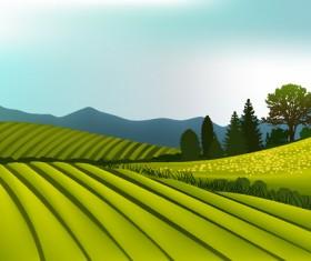 Beautiful fields landscapes vector set 13