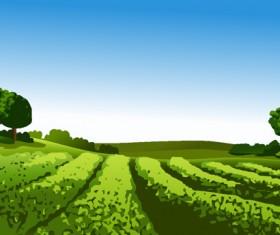 Beautiful fields landscapes vector set 20