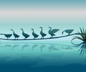 Beautiful swan with natural vector background