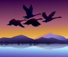 Flying swan with sunset background vector 01