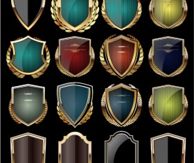 Glass textured with golden shield vector