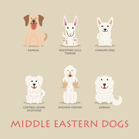 Middle eastern dogs icons vector