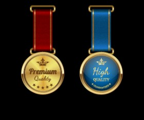 Sparkling award medal vector set 01