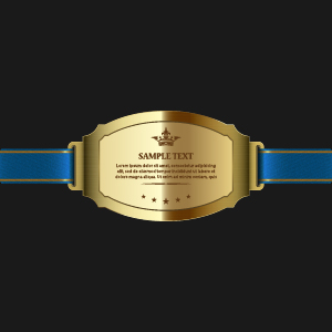 Sparkling award medal vector set 06