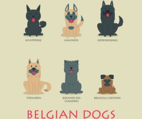 Vector belgian dogs icons set