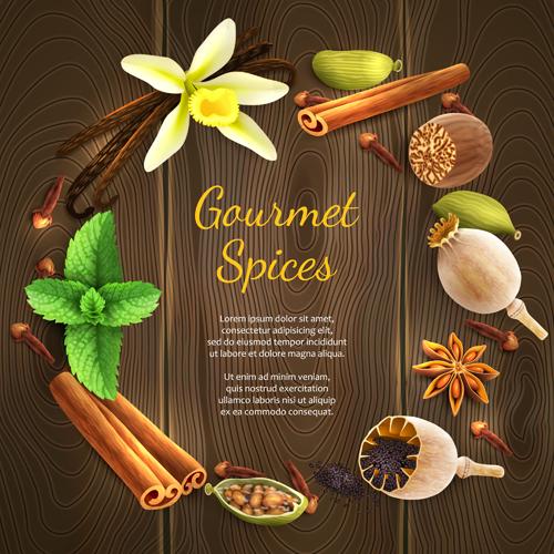 Vector gourmet spices ...